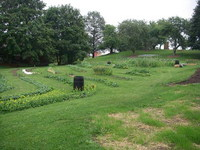 Orchard_garden_from_house_080713