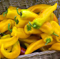 Peppers_yellow_hungarian